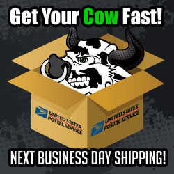 Cow_New_Shipping_Square
