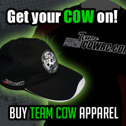 Cow_New_Team_Cow_Square